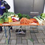 Erntemarkt2